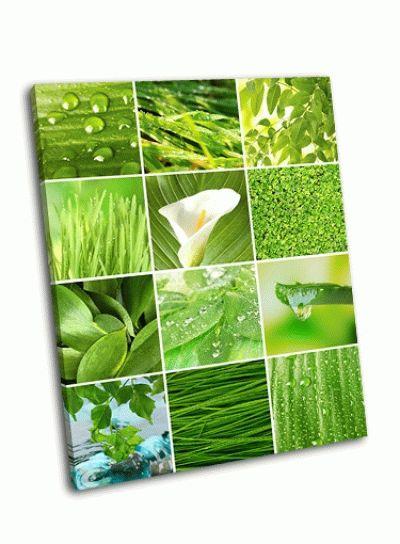 Картина коллаж с зеленой травой и листьями