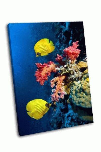 Картина коралловые рифы и рыбы-бабочки