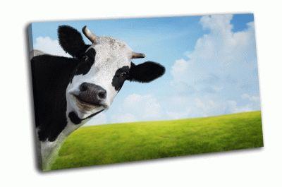 Картина корова на зеленом летнем лугу
