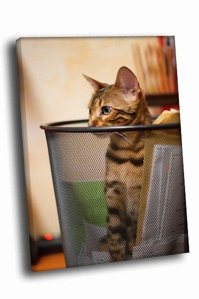 Картина кошка в корзине для бумаг