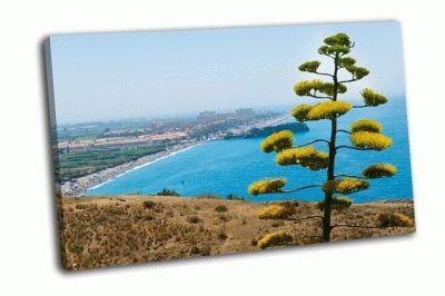 Картина коста тропикаль в испании
