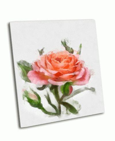 Картина красивая светло-розовая роза