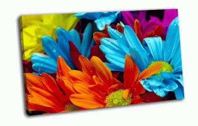 Картина красочные цветы