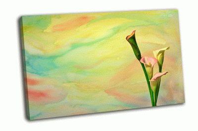 Картина красочный фон с каллами