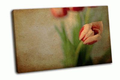 Картина красота весенних цветов