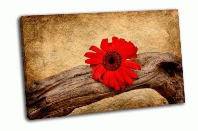 Картина кривые коряги с красным цветком