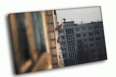 Картина кто твой сосед? жираф