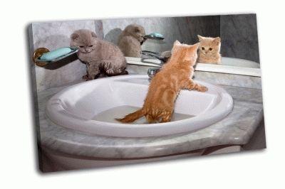 Картина купание котят в раковине