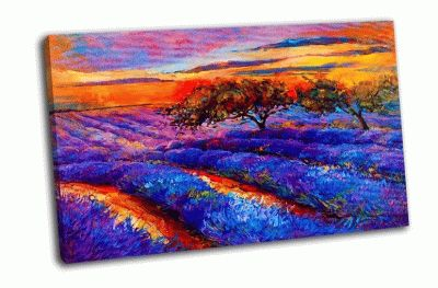 Картина лаванды полей на закате