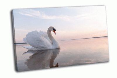 Картина лебедь на пруду