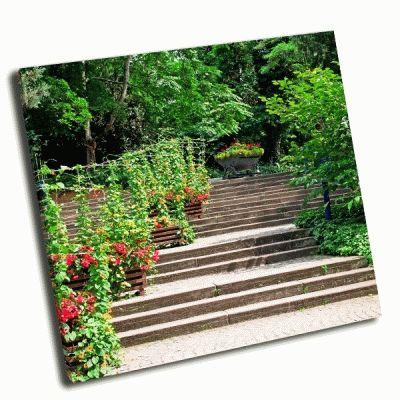 Картина лестница в уютном парке