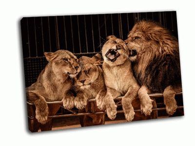 Картина лев и три львицы