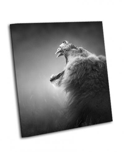 Картина лев отображает опасные зубы