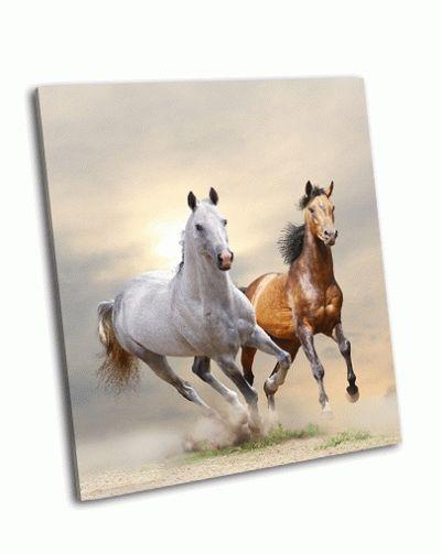 Картина лошади в пыли