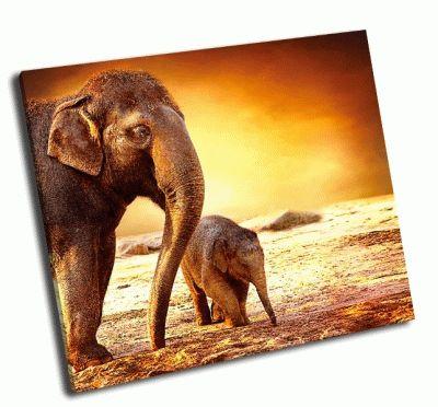 Картина мать с слоненком на прогулке