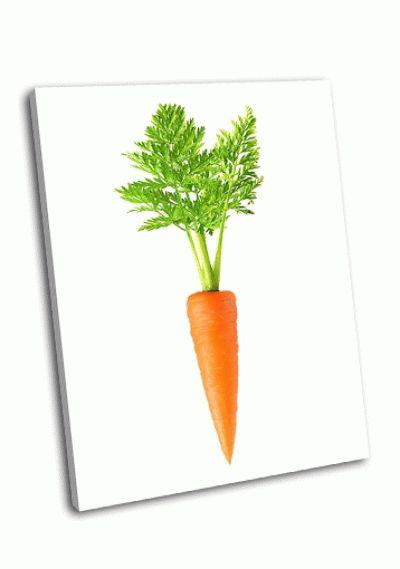 Картина морковь на белом фоне