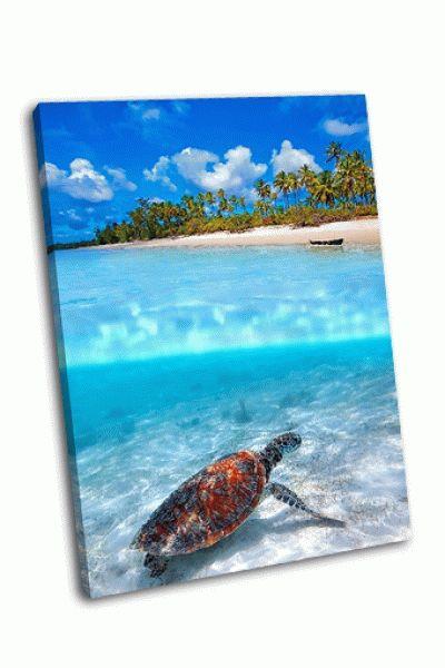 Картина морская черепаха