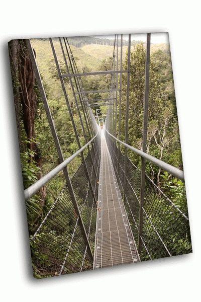 Картина мост в джунглях