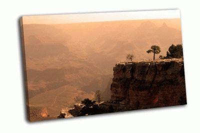 Картина национальный парк  гранд-каньон