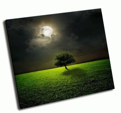 Картина ночь и луна на зеленом поле-2