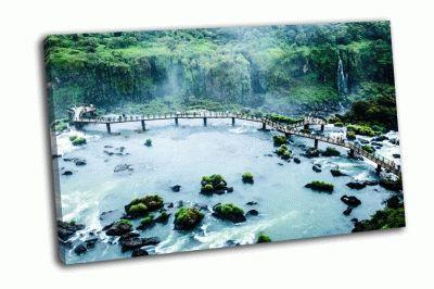 Картина одна из серии водопада игуасу
