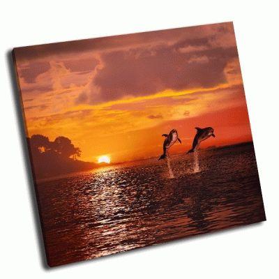 Картина оранжевый закат на море и дельфины