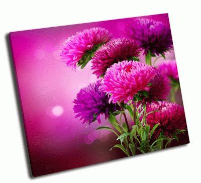 Картина осенние цветы астры