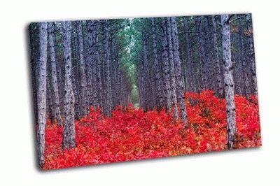 Картина осенние листья, крым