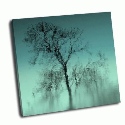 Картина отражения дерева в воде