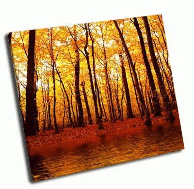 Картина озеро в осеннем лесу-2