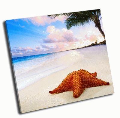 Картина пейзаж с морской звездой на пляже