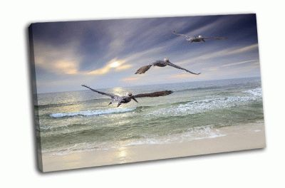 Картина пеликаны летящие над морем
