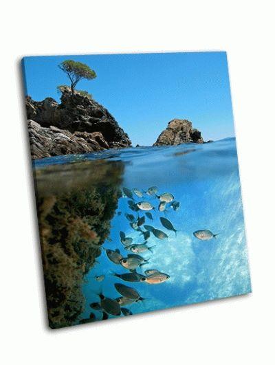 Картина подводный вид на скалистый островок