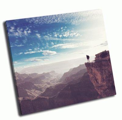 Картина поход в большой каньон