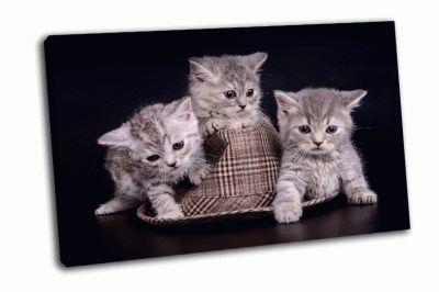 Картина полосатые котята