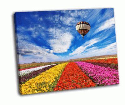 Картина поля с цветами