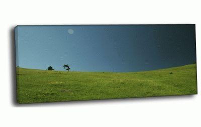 Картина поляна