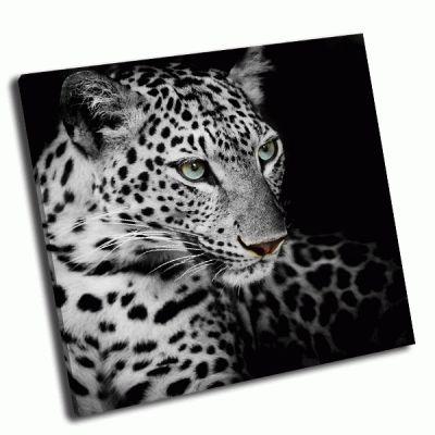 Картина портрет леопарда
