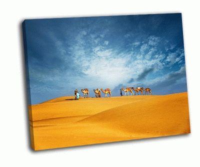 Картина путешествие верблюдов