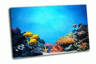 Картина разноцветные рыбки