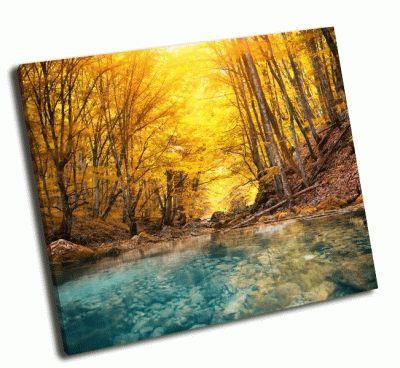 Картина река глубоко в горном лесу