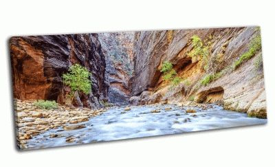 Картина река вирджин в национальном парке зайон