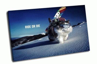 Картина ride or die