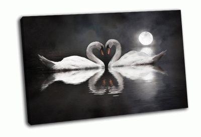 Картина романтический лебедь