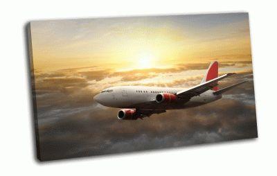 Картина самолет в небе