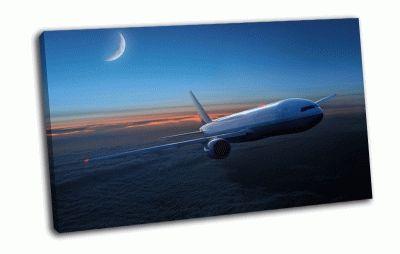 Картина самолёт  в  полёте
