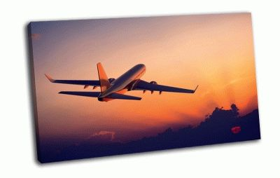 Картина самолет в воздухе