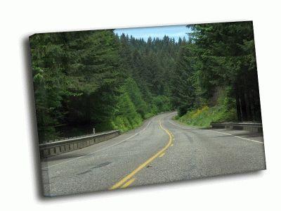 Картина шоссе  в лесу