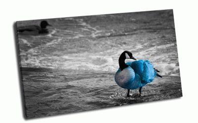 Картина синяя птичка