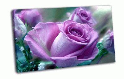 Картина сиреневая роза